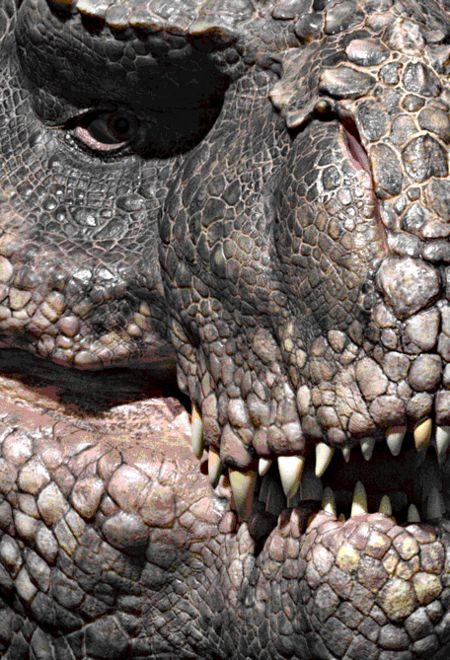 Pieman194 turannosaurus aa6db62c d2e8