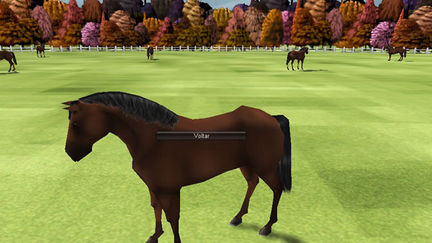 3D Social game - Race Horse care