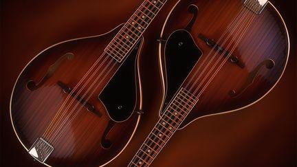 Two Mandolins