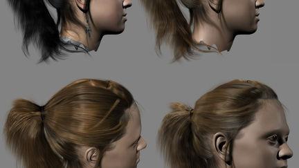 Hairfarm test
