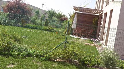 CG Garden - animation still frame #0041