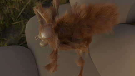 Bat Fly - Mormotomyia hirsuta