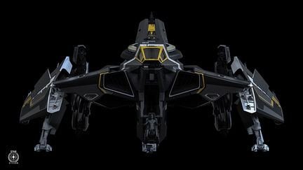 STAR CITIZEN - ANVIL HAWK