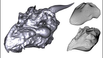 Dragon's Head (high resolution sculpt)