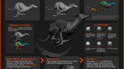 Greyhound Sculpting Workflow