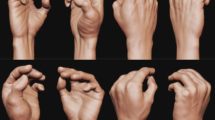 E.D.A.H - Hand study
