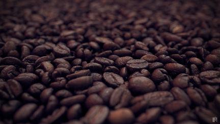 Macro Beans