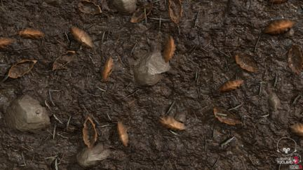 Substance Designer: Wet Forest Ground