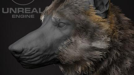 Realtime Fur