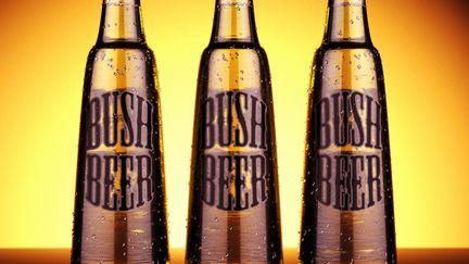 Best beer in the world (humor)