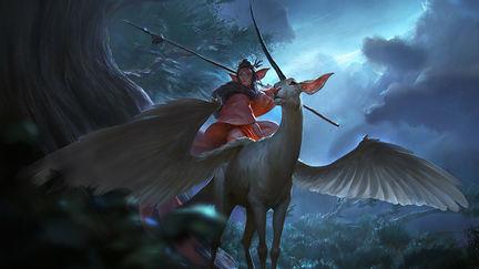 The Unicorn Rider