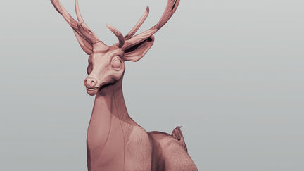 Deer study