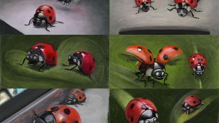 Lady Bug Character
