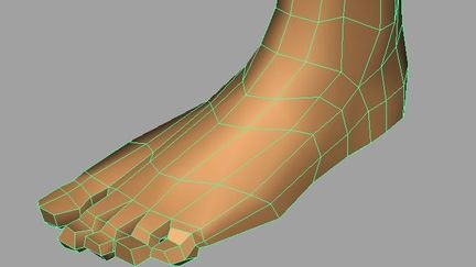 Foot pre subD