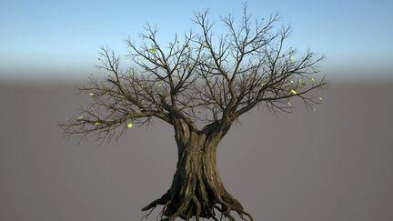 Hi resolution tree for short film