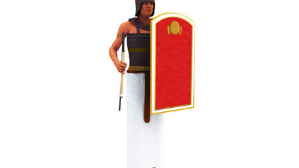 Ancient Egypt Charioteer NK