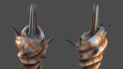 Robertberrier seashell weapon 1 bfdc021b vxz4