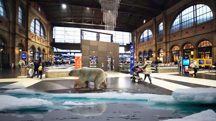 Augmented Reality Advertising Campaign – VIRTUAL POLAR BEAR By GameYan game development companies
