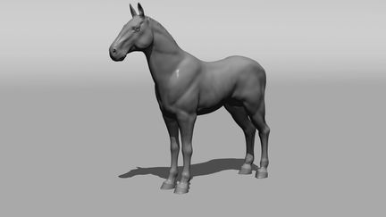 Horse Model and Animation