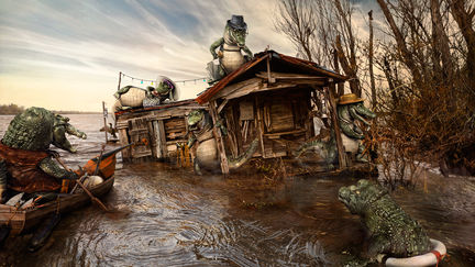 Life in the Bayou - The Day After