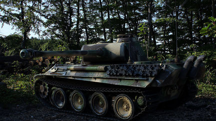 PANTHER - Just another tank...