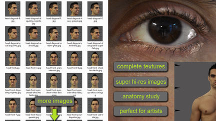 HIGH RESOLUTION TEXTURES COLLECTION WITH 3DS MAX MATERIALS AND TRAINING VIDEOS
