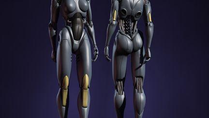 Female robot wip