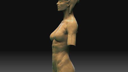 Woman - 3D Sketch