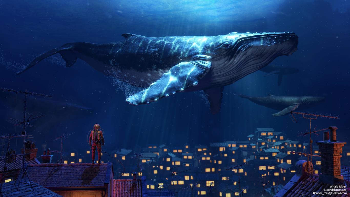 Bondok whale rider 1 860b867c y70r