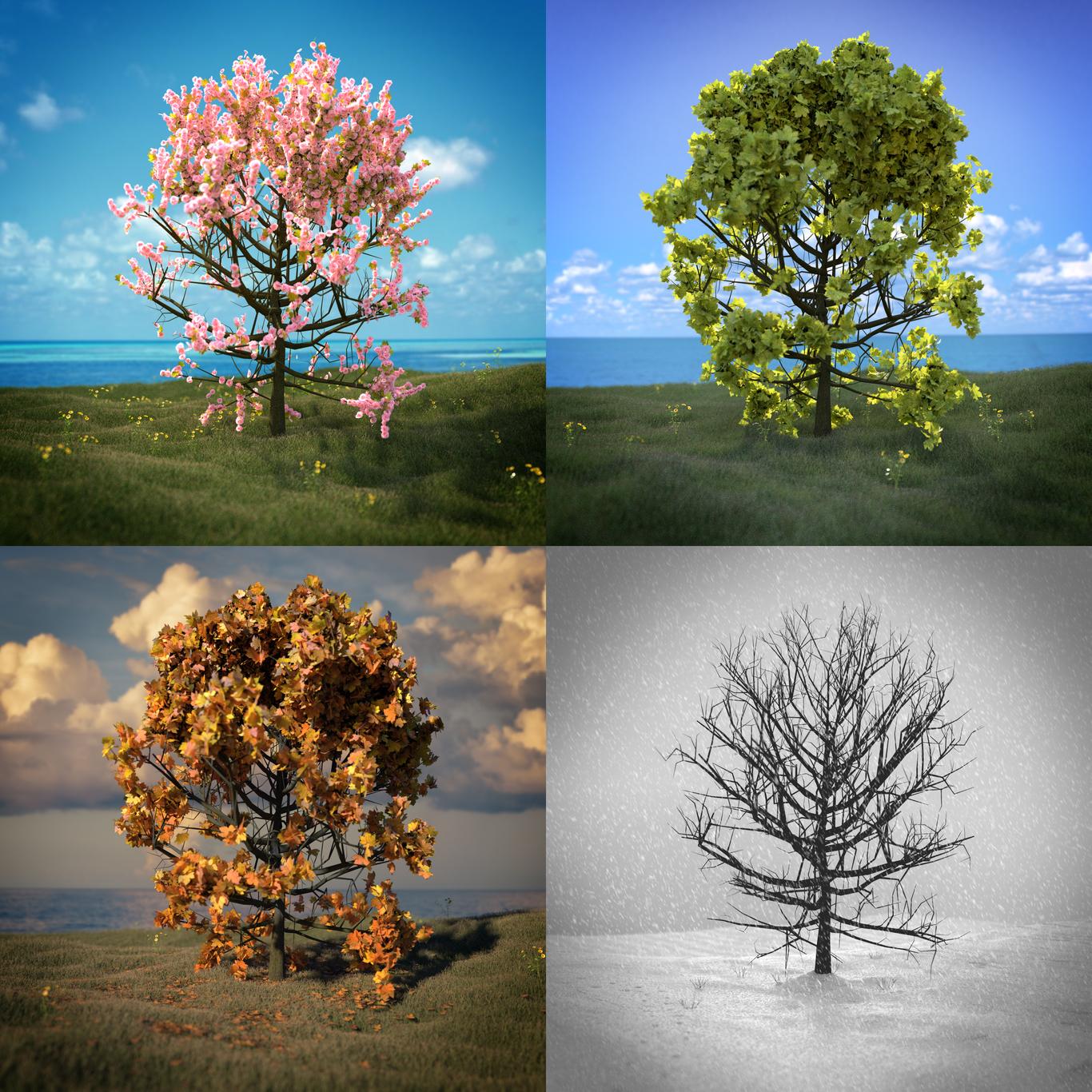 Guipah four seasons 1 49c4fbdc mwgz