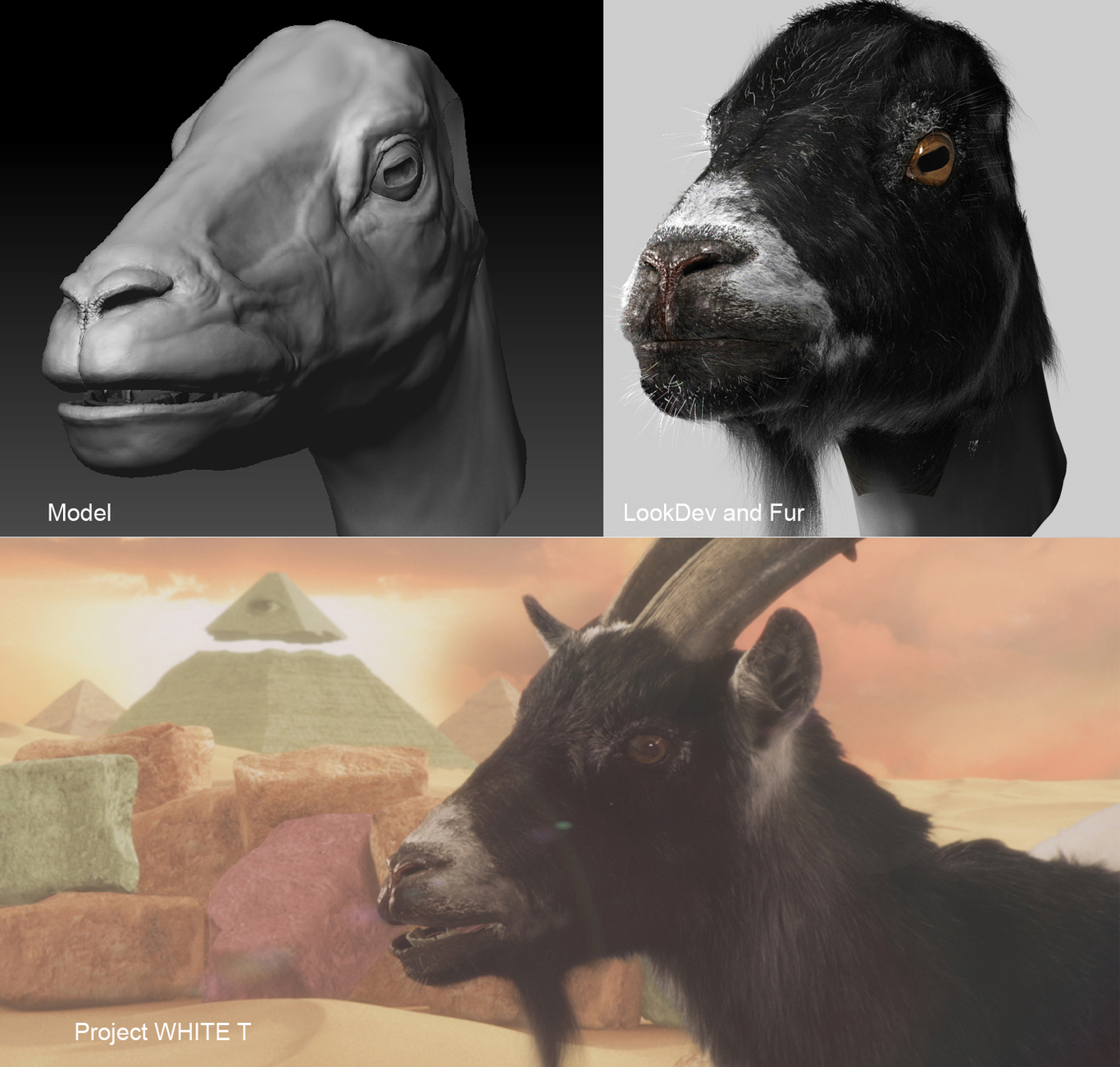 Lacluna talking goat for the 1 fe2a386d 5yo6