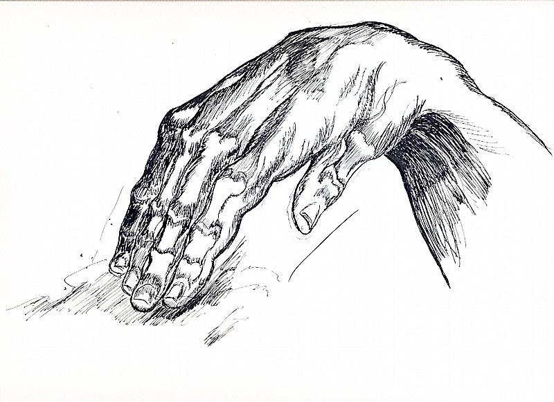 Mu hand study burne hog 1 1c6cac26 hvyb