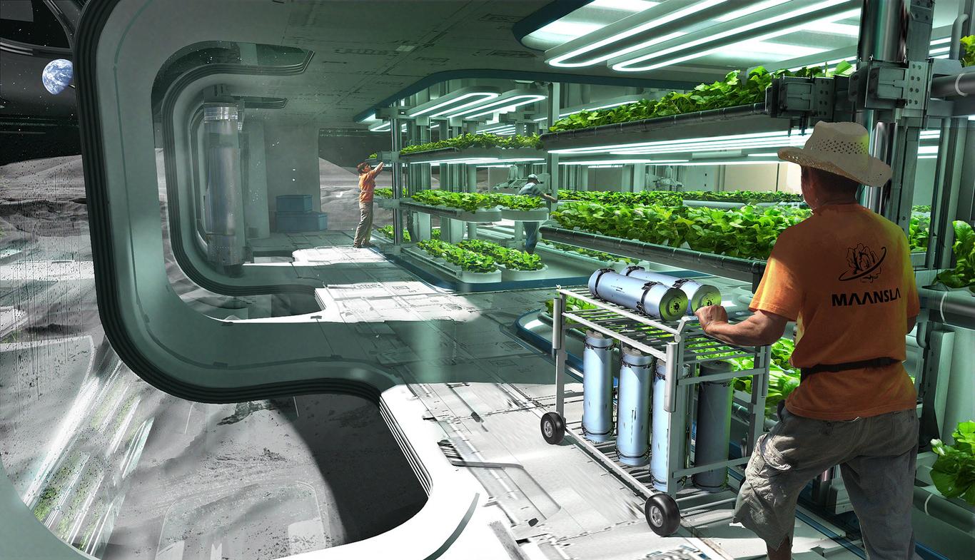Phade01 hydroponics 1 a285fae1 h6dc