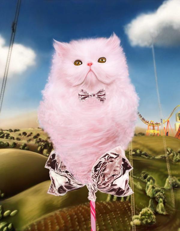 Sokolova happy kitty 1 97e1c7f0 v1dh